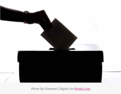 silhouette of a ballot being put into a box