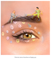 close up feminine eye